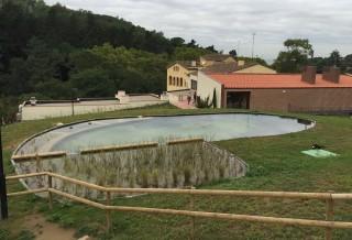 Piscina natural lago en Vallromanes