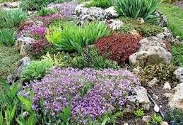 Jardín sostenible variado