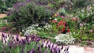 Jardines Eficientes